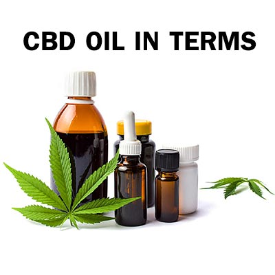 cbd oil in terms